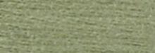 Fern Green: 522