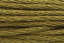 Medium Golden Olive: 00281