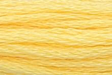 Yellow Plum: 00295