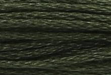 Dark Fern Green: 00862