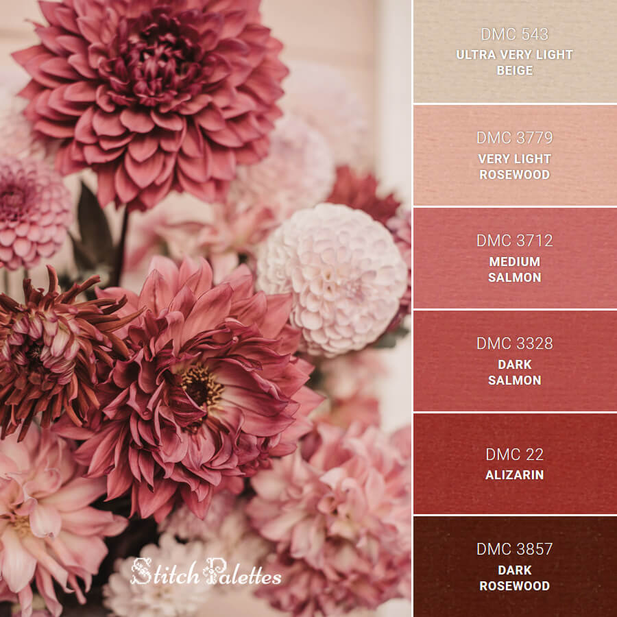 Pink In Full Bloom
