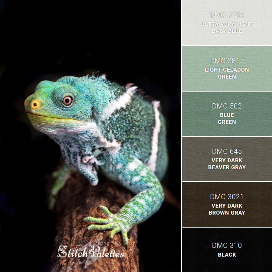 Stitch Palette SPA0107: Iguana In The Dark