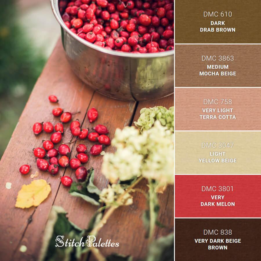 Rosehip Reds