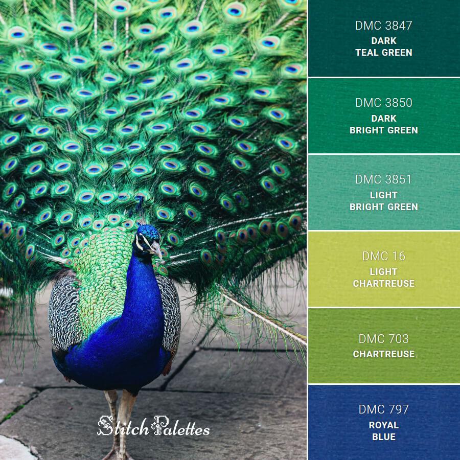 Stitch Palette SPA0131: Peacock Pride