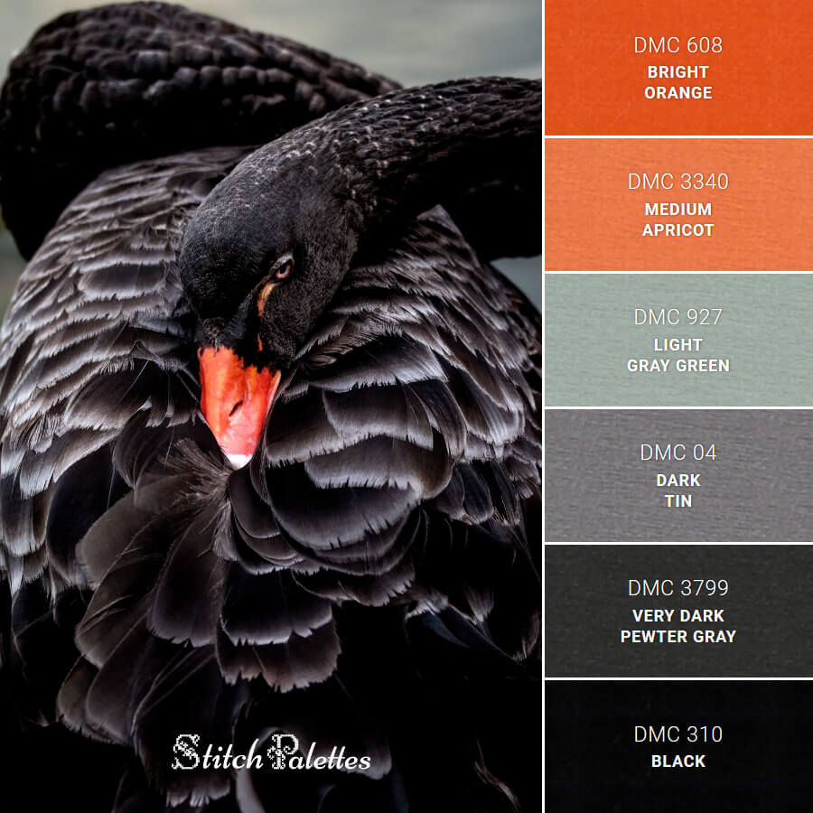 Stitch Palette SPA0149: Black Swan