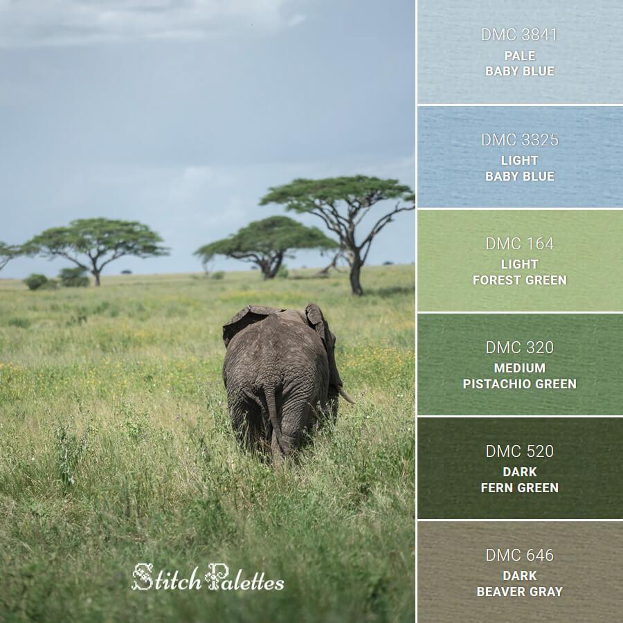 Serene Serengeti
