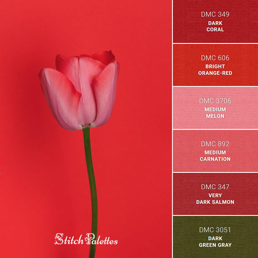 Stitch Palette SPA0267: Red Tulip