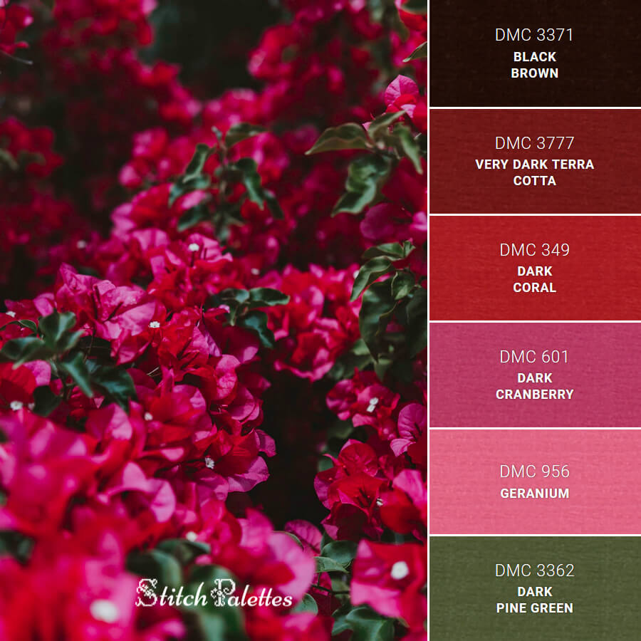 Stitch Palette SPA0274: Backyard Blossom