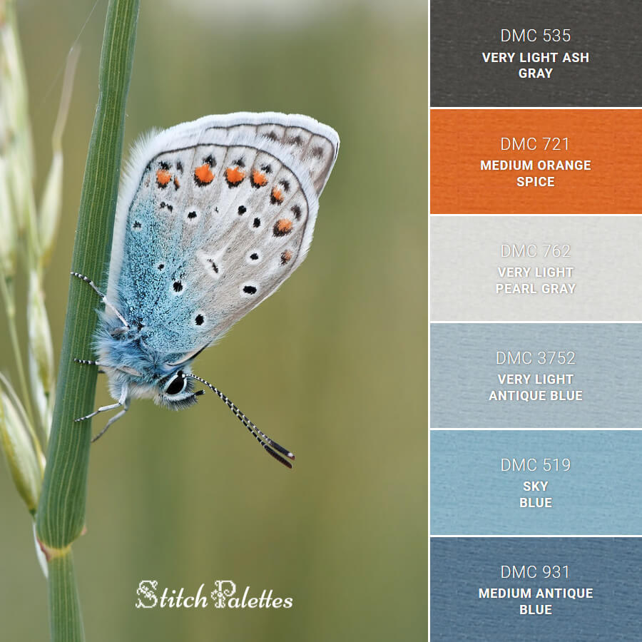 Stitch Palette SPA0323: Blue Butterfly