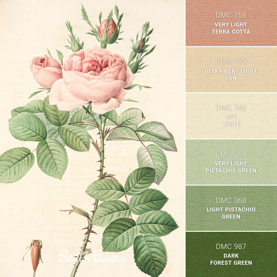 Stitch Palette SPA0331: Rosa Bifera Officinalis