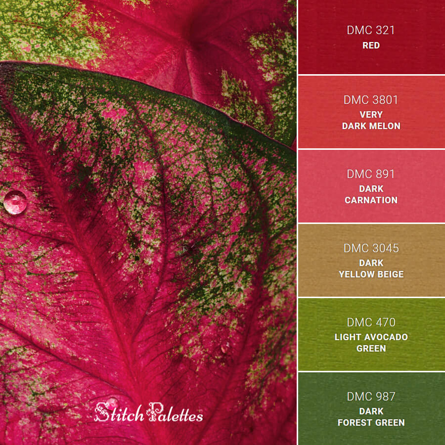 Stitch Palette SPA0348: Caladium After Rain