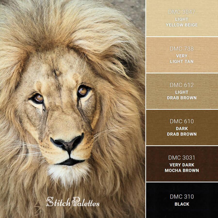 Stitch Palette SPA0356: Lion's Face