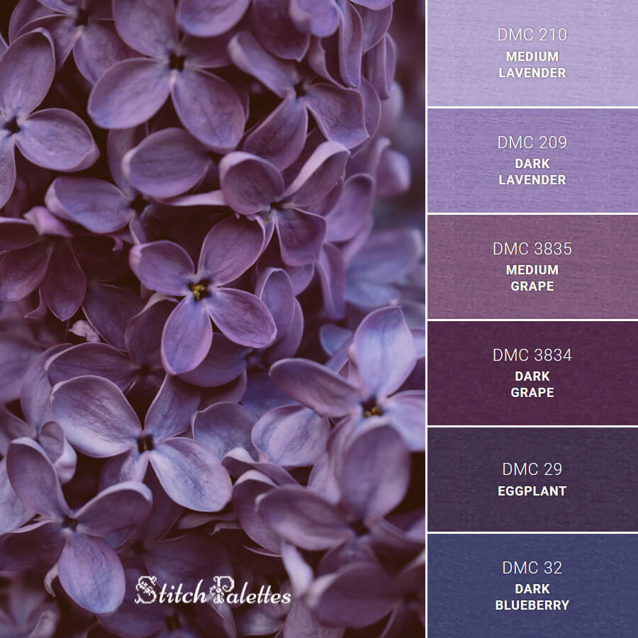 Purple Scents