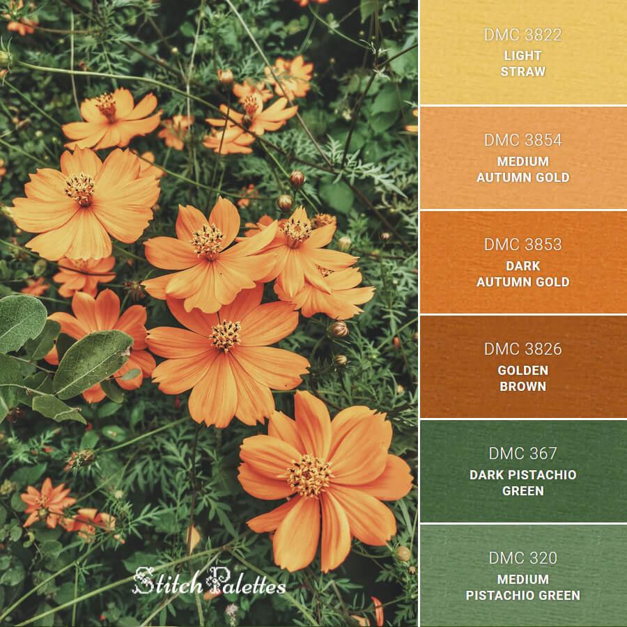Stitch Palette SPA0421: Orange Petals