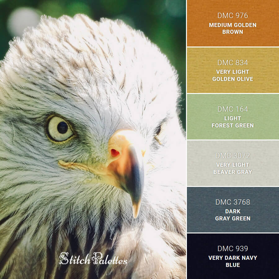 Stitch Palette SPA0468: Eagle Eyes