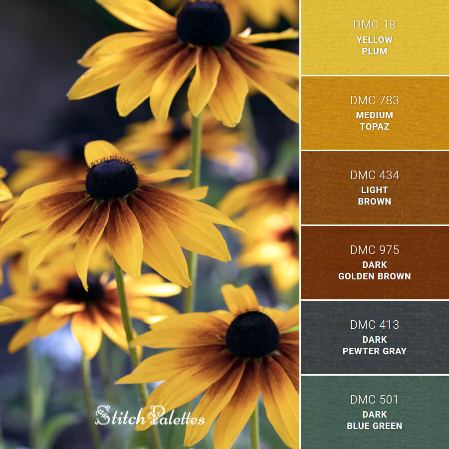 Stitch Palette SPA0476: Black Eyed Susans