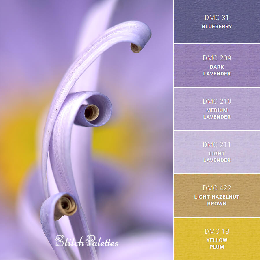 Stitch Palette SPA0489: Tall Curly Petals