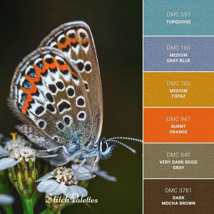 Stitch Palette SPA0554: Butterfly With Spots