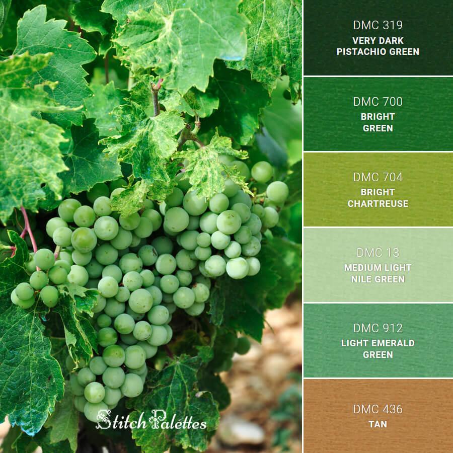 Stitch Palette SPA0578: Grapes In Croatia