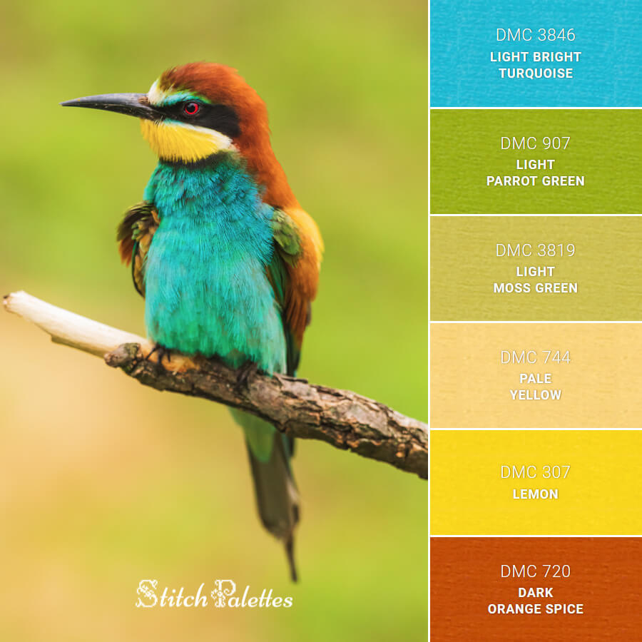 Stitch Palette SPA0592: European Bee-Eater