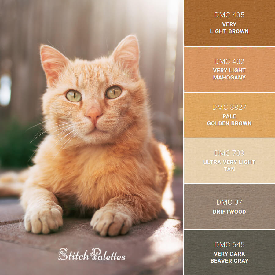 Stitch Palette SPA0608: Orange Tabby Cat