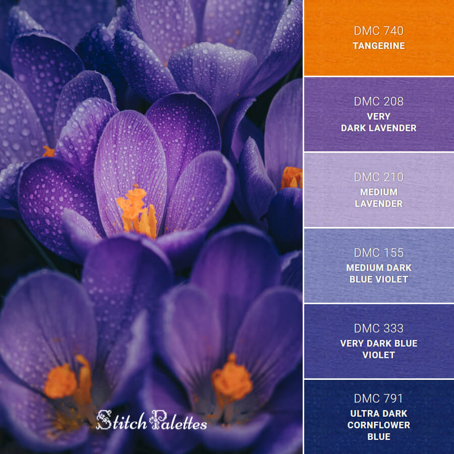 Stitch Palette SPA0612: Purple Crocus Flowers