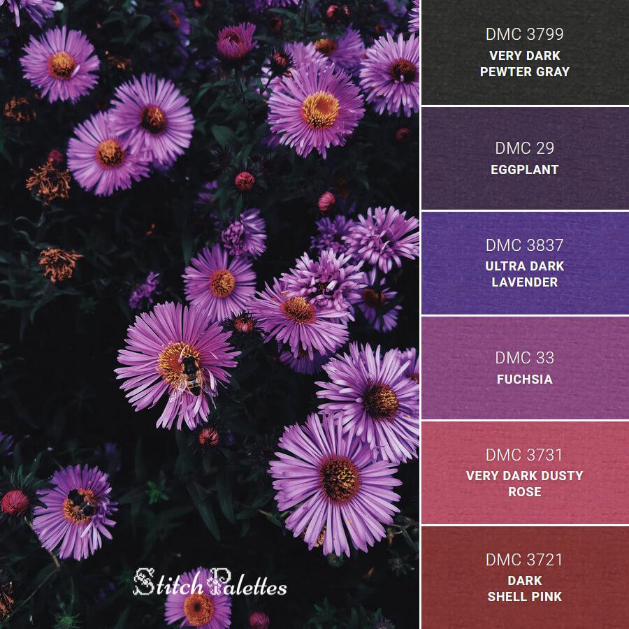 Purple Flowers In Focus