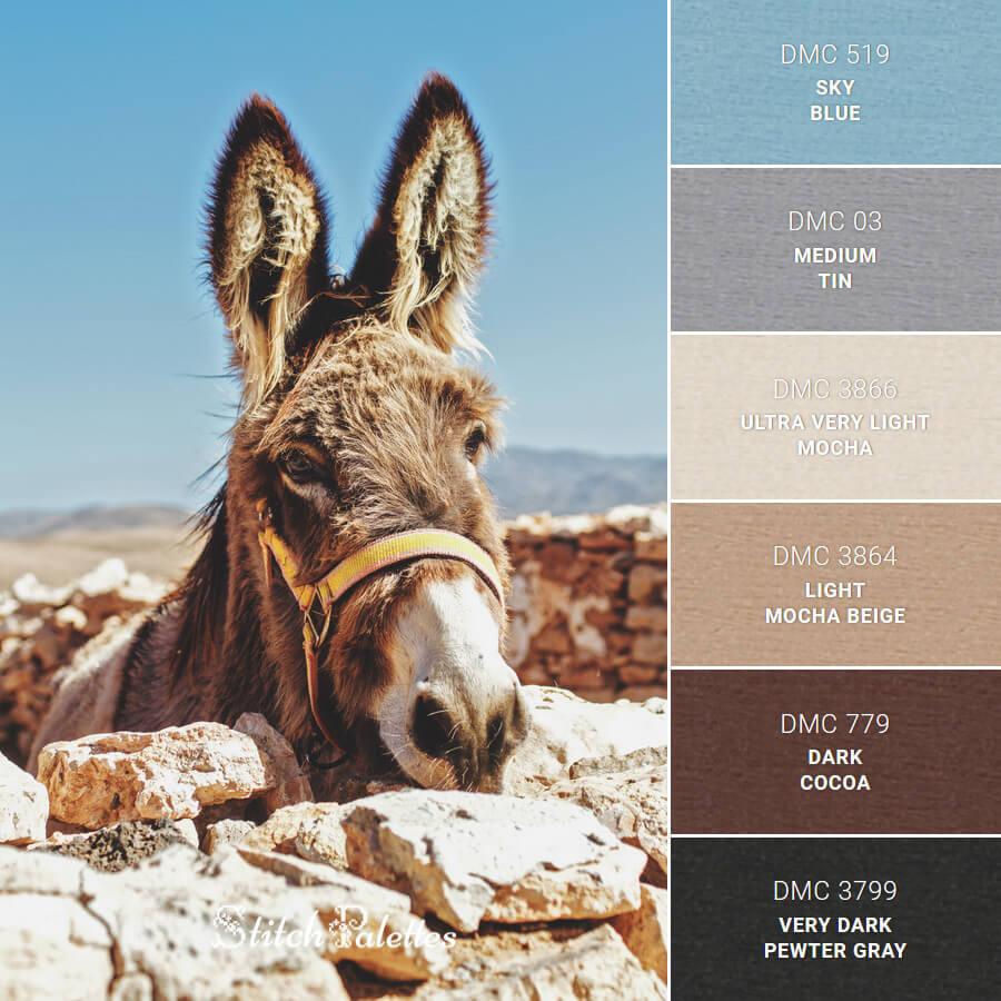 Brown Donkey In Spain