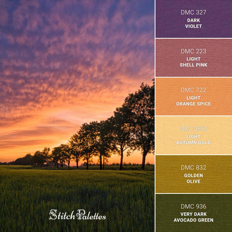 Field Of Sunset