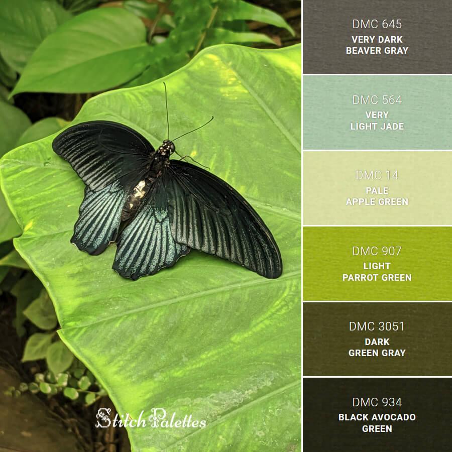 Stitch Palette SPA0684: Black Butterfly On A Leaf