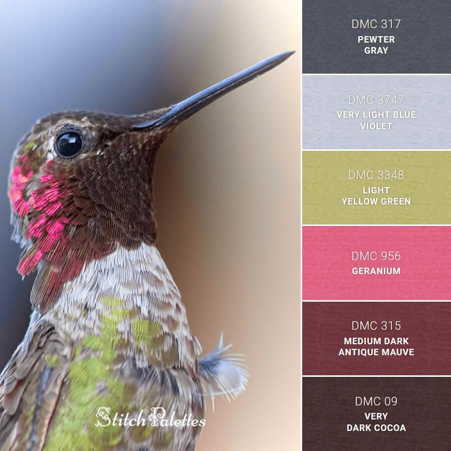 Proud Hummingbird