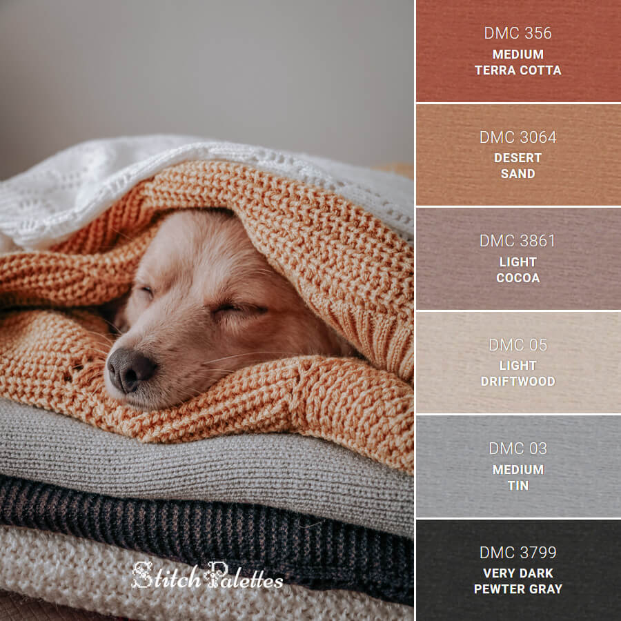 Sleeping Dog Under Blankets