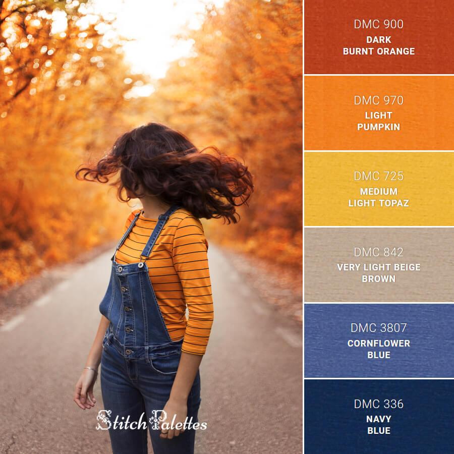 Looking Back At Fall