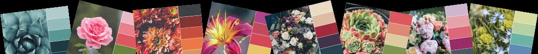 The Flower Palette Booklet